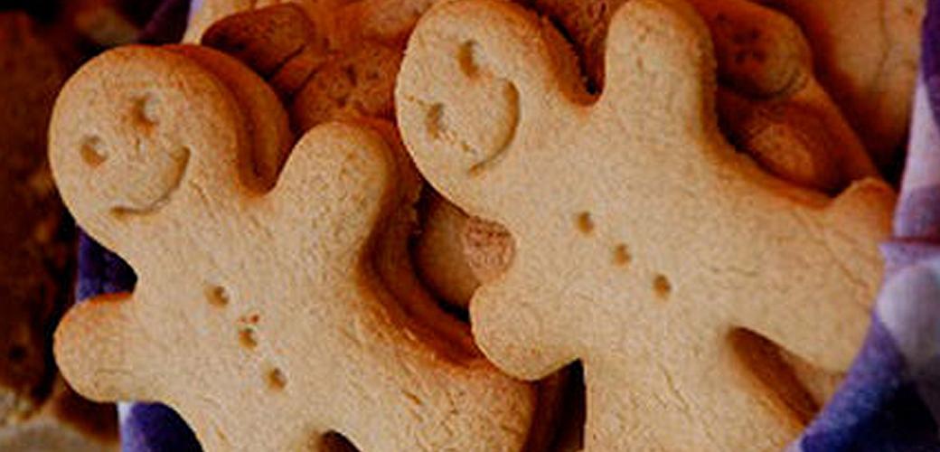 DL Gingerbread Boy Resource